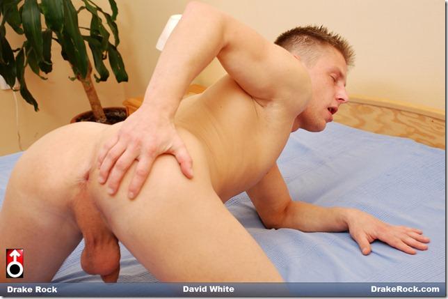 star porn rock Drake gay